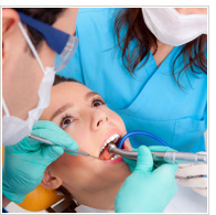 colleges with dental majors