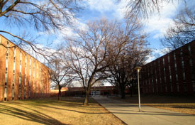 North Complex residence halls Olson (left) and Micklesen (right)
