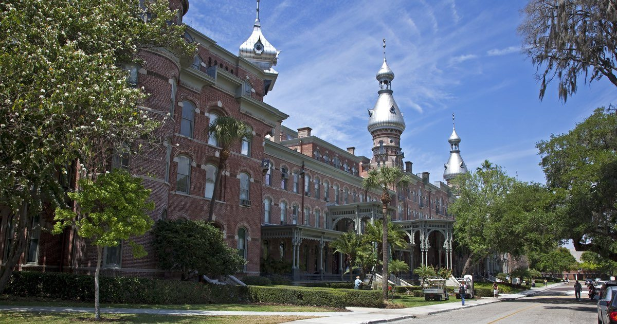 university of tampa online  campus programs