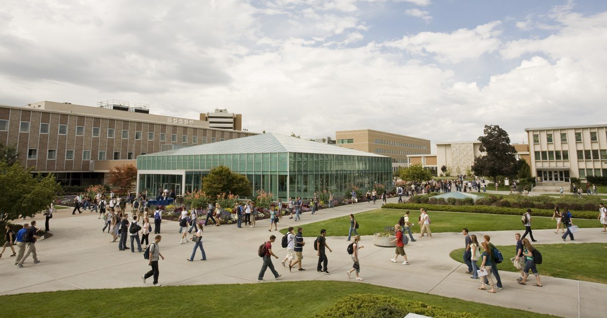 byu online and campus programs